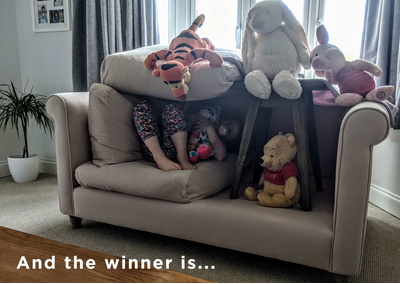 SCATTER CUSHIONS BLOG WINNER V2