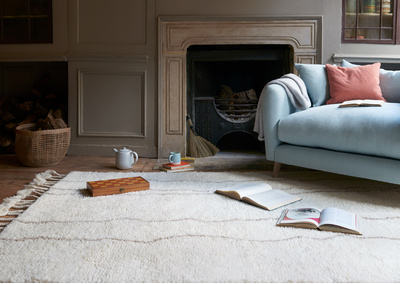 Feb launch rugs blog