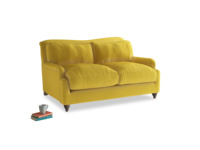 Small Pavlova Sofa in Bumblebee clever velvet