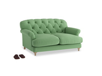 Small Truffle Sofa in Clean green Brushed Cotton