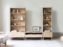Bubba modular shelving unit  with TV