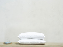 Dust Buster Hypoallergenic Pillow