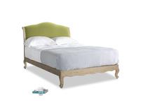 Double Coco Bed in Light Olive Plush Velvet