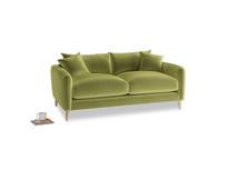 Small Squishmeister Sofa in Light Olive Plush Velvet