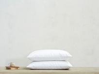 Bee's Knees pillow