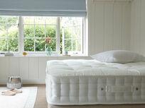 Top Dog mattress