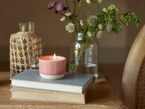 Candle Pot in Rhubarb Fool smelly wax drop