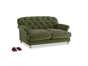 Small Truffle Sofa in Leafy Green Clever Cord