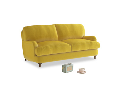 Small Jonesy Sofa in Bumblebee clever velvet