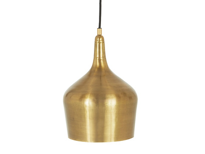 Foundry In Brass pendant light