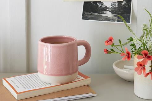 mug shot 1700 2