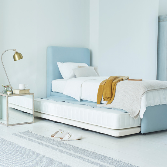 Friends single trundle guest bed