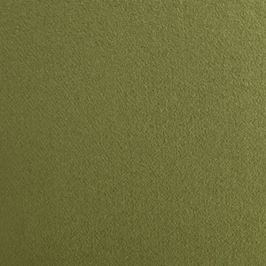 1118629 plush velvet olive